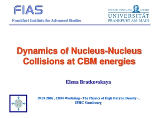 Dynamics of Nucleus-Nucleus Collisions at CBM energies