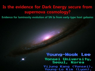 Is the evidence for Dark Energy secure from supernova cosmology?