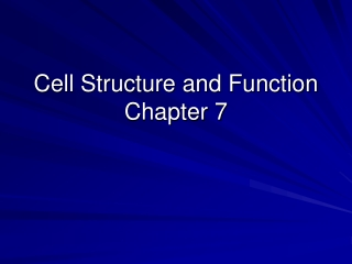 Cell Structure and Function Chapter 7