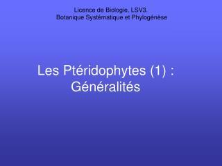 Les Ptéridophytes (1) : Généralités