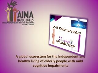 2-3 February 2015