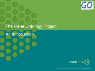 The Gene Ontology Project