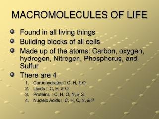 MACROMOLECULES OF LIFE