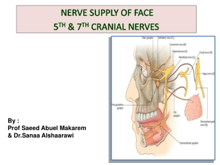 NERVE SUPPLY OF FACE  5 TH  & 7 TH  CRANIAL NERVES
