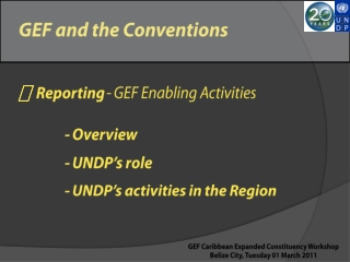GEF and the Conventions  Reporting  - GEF Enabling Activities 	    - Overview 	    - UNDP's role