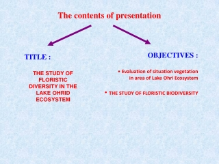 The contents of presentation