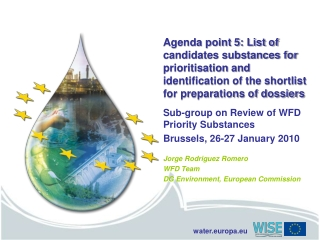 Sub-group on Review of WFD Priority Substances Brussels, 26-27 January 2010