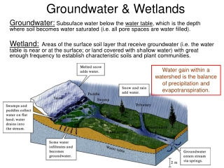 Groundwater & Wetlands
