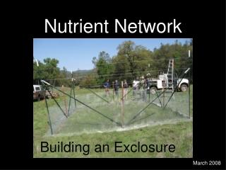 Nutrient Network