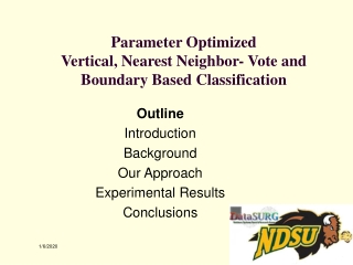Parameter Optimized Vertical, Nearest Neighbor- Vote and  Boundary Based Classification