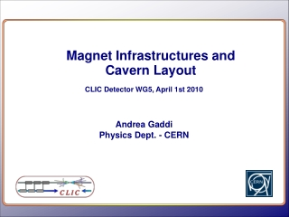 Magnet Infrastructures and Cavern Layout