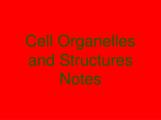 Cell Organelles and Structures