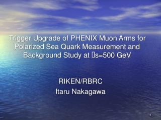RIKEN/RBRC Itaru Nakagawa