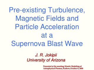 Pre-existing Turbulence, Magnetic Fields and  Particle Acceleration  at a  Supernova Blast Wave
