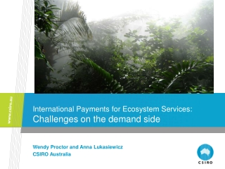 International Payments for Ecosystem Services: Challenges on the demand side