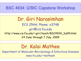 BSC 4934: Q'BIC Capstone Workshop