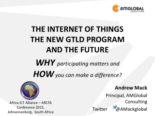 THE INTERNET OF THINGS THE NEW GTLD PROGRAM  AND THE FUTURE