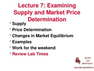 Lecture 7: Examining Supply and Market Price Determination
