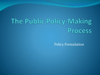 The  Public Policy-Making Process