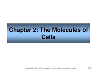 Chapter 2: The Molecules of Cells