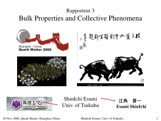 Rapporteur 3 Bulk Properties and Collective Phenomena ShinIchi Esumi Univ. of Tsukuba