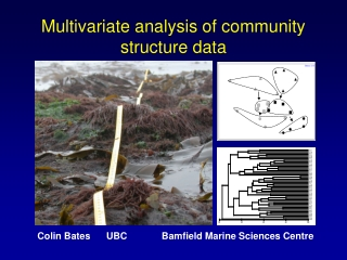 Multivariate analysis of community structure data