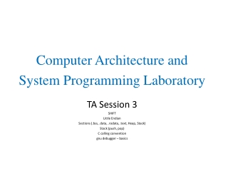 TA Session 3 SHIFT Little Endian Sections (.bss, .data, .rodata, .text, Heap, Stack)