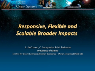 Responsive, Flexible and Scalable Broader Impacts
