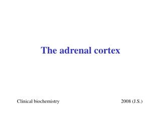 The adrenal cortex