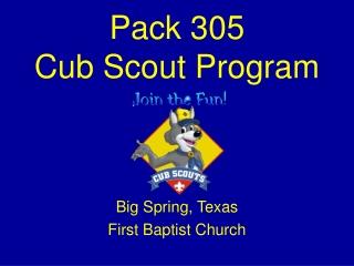 Pack 305 Cub Scout Program
