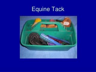 Equine Tack