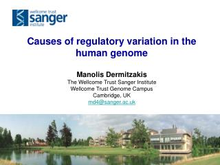 Causes of regulatory variation in the human genome