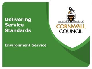 Delivering  Service  Standards  Environment Service
