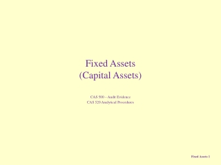 Fixed Assets (Capital Assets)