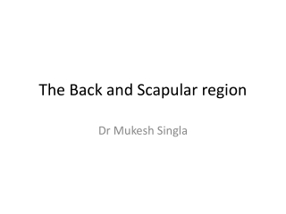 The Back and Scapular region