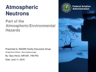 Atmospheric Neutrons