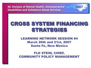 CROSS SYSTEM FINANCING STRATEGIES