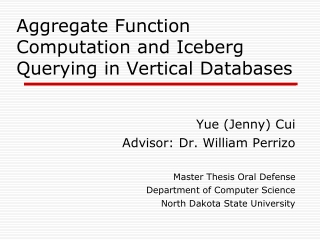 Aggregate Function Computation and Iceberg Querying in Vertical Databases