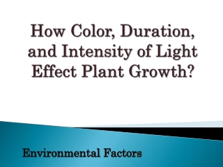 How Color,  Duration , and  Intensity  of Light  Effect Plant Growth ?