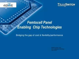 Femtocell Panel Enabling  Chip Technologies