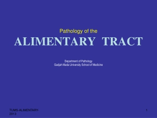 Upper ALIMENTARY tract