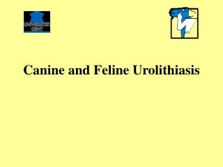 Canine and Feline Urolithiasis