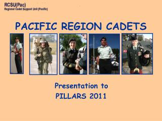 Presentation to  PILLARS 2011