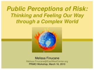 Public Perceptions of Risk:  Thinking and Feeling Our Way  through a Complex World
