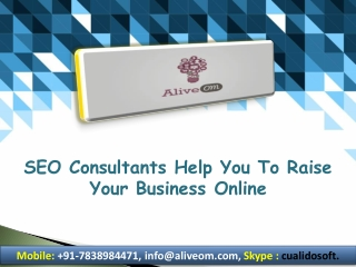 SEO Consultants Help You To Raise Your Business Online