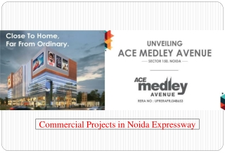Commercial Projects in Noida Expressway - Ace Medley Avenue