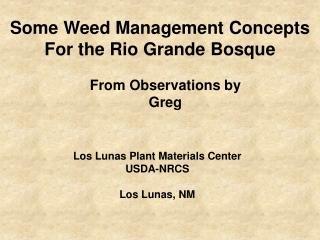 Some Weed Management Concepts For the Rio Grande Bosque