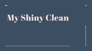 My Shiny Clean