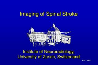 Imaging of Spinal Stroke
