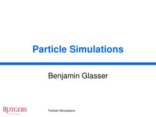 Particle Simulations